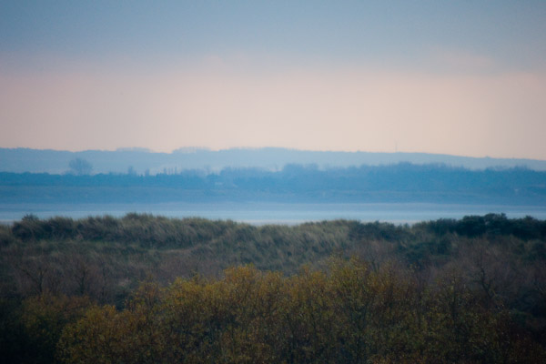 Baie de Somme (Parc du Marquenterre) - 101109_01134