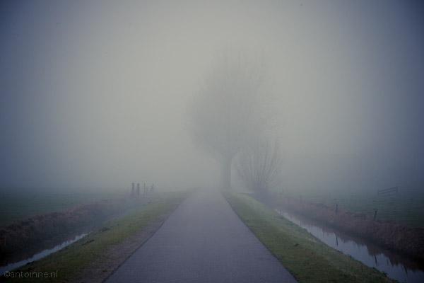 Polderweg - DSC07171_1