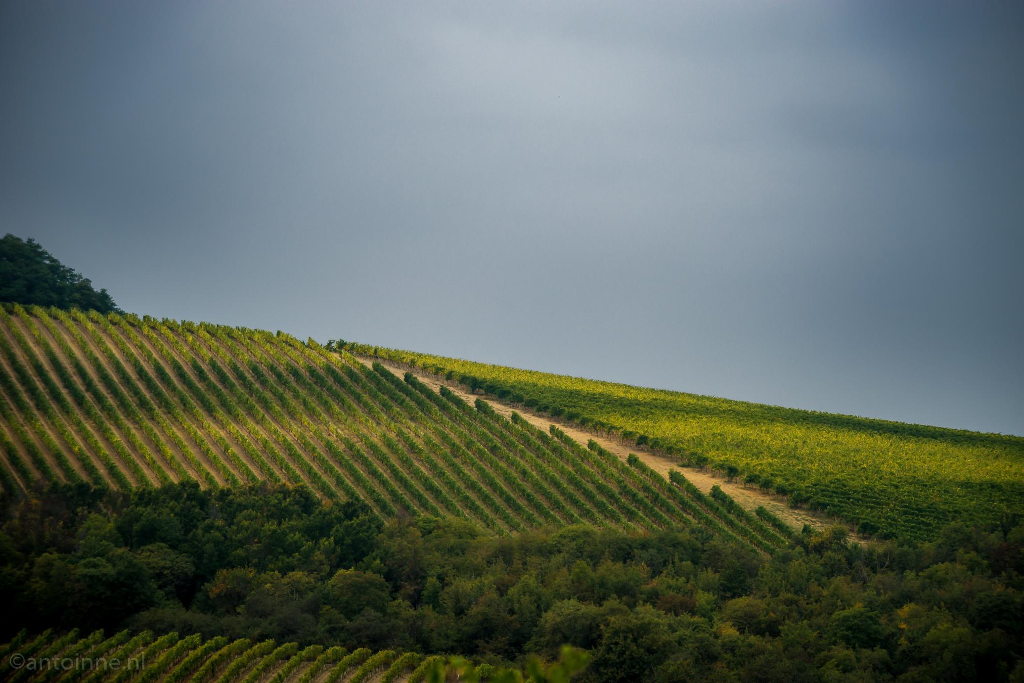 Tuscany (2013)