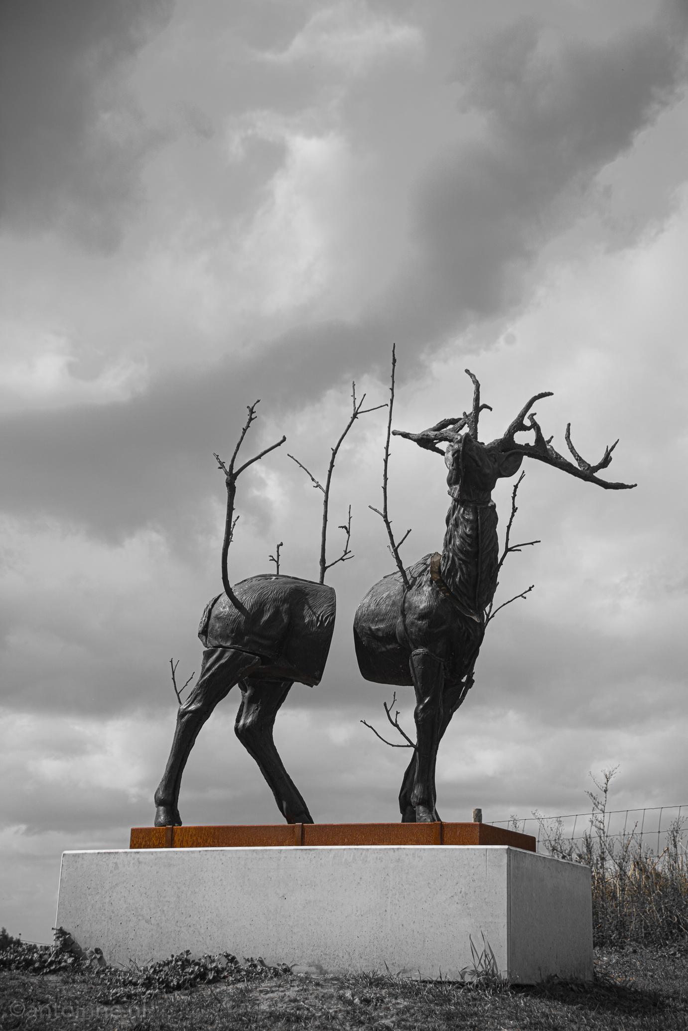 Monument for Cervus Vitalis #2 (Malus Sylvestris) - Beaufort aan Zee 2018, Stief DeSmet