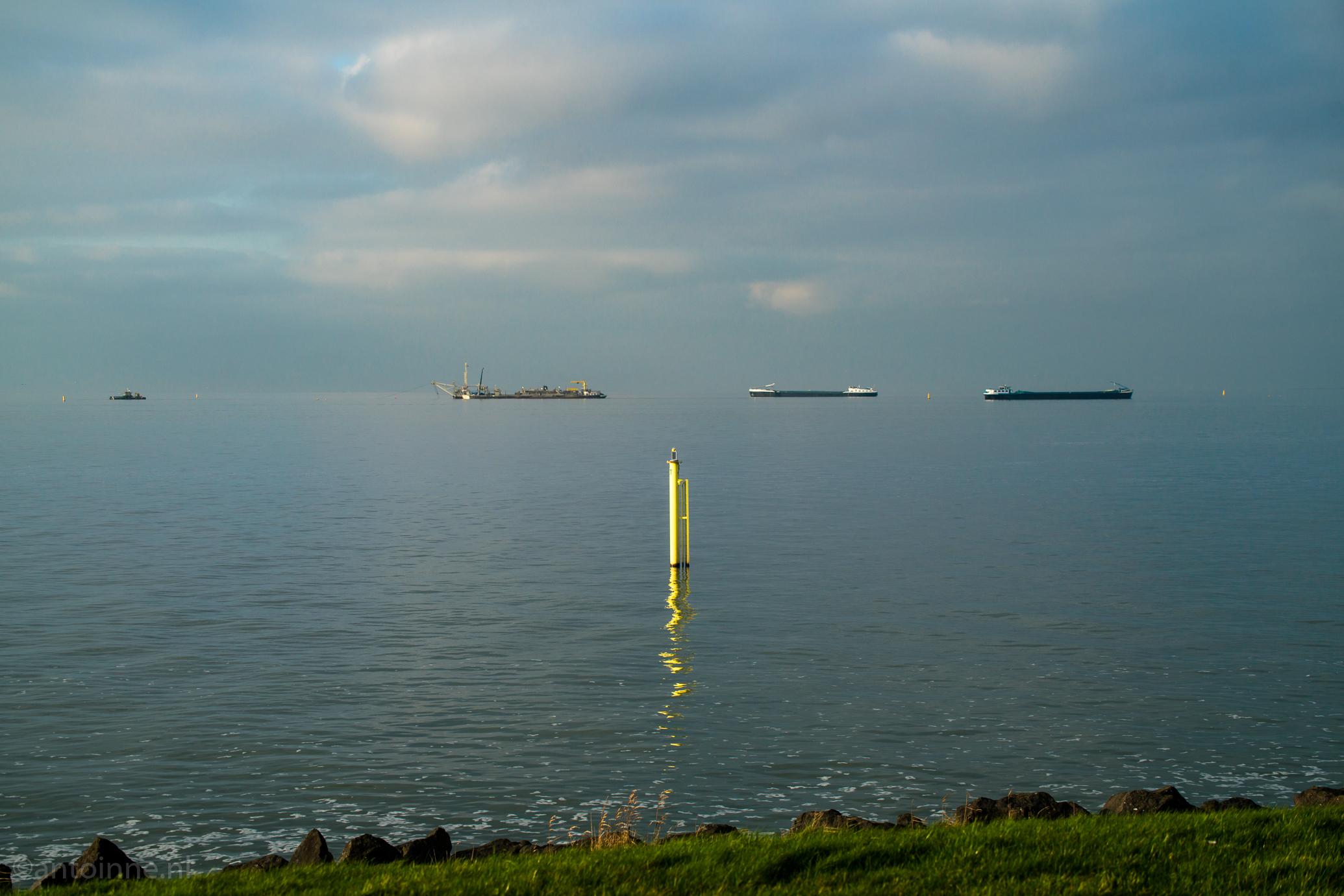 Zicht vanaf Oostvaardersdijk, Lelystad