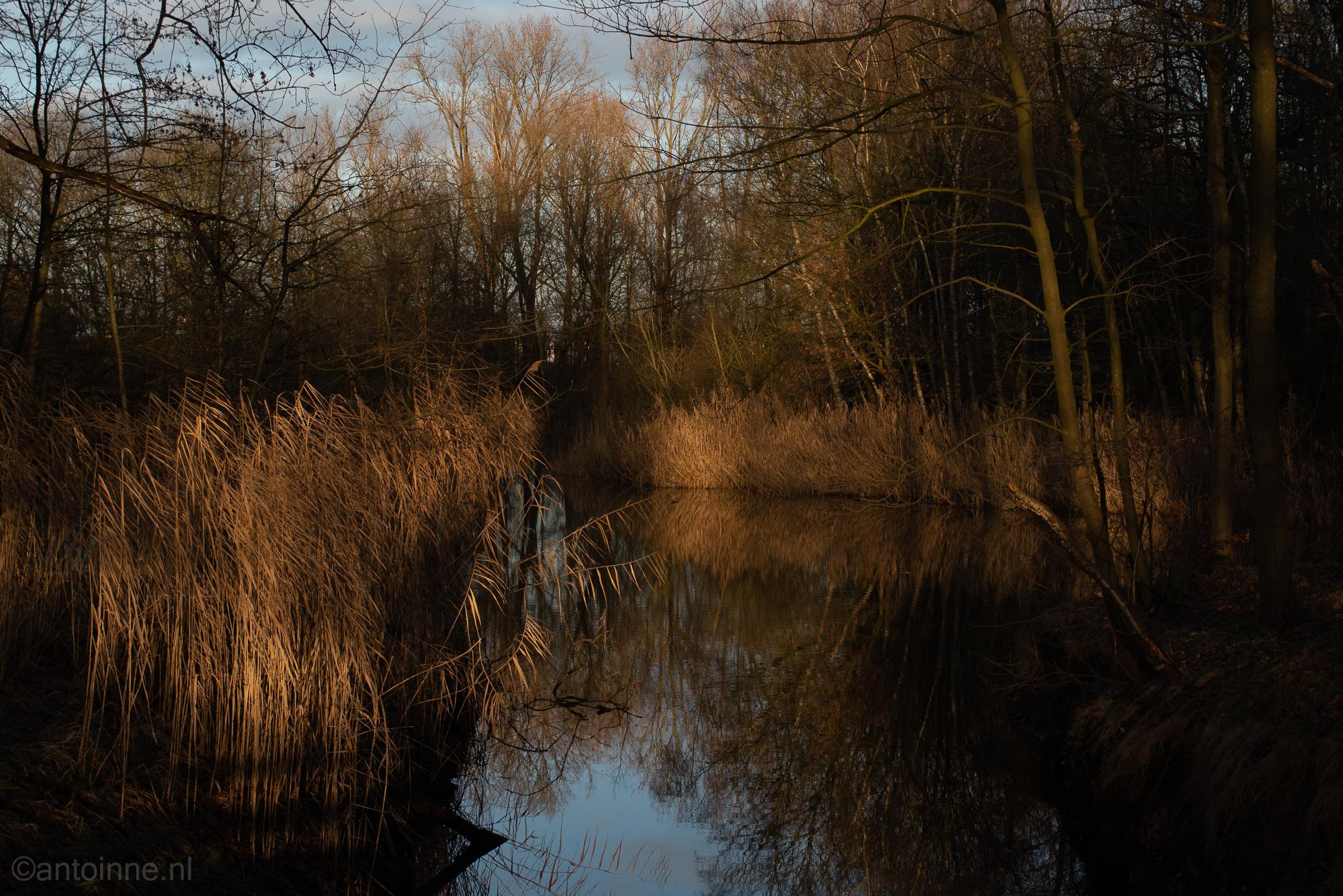 Anna's Hoeve (Christmas Day, Hilversum)
