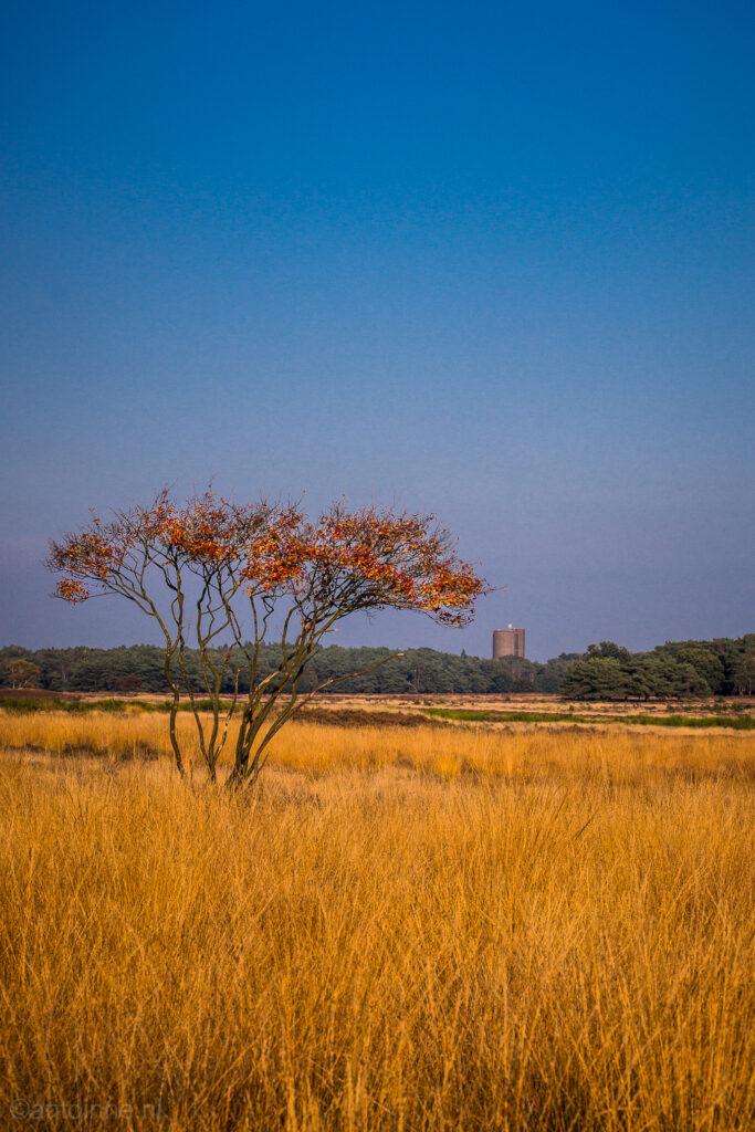 Watertoren bij Laren, Westerheide