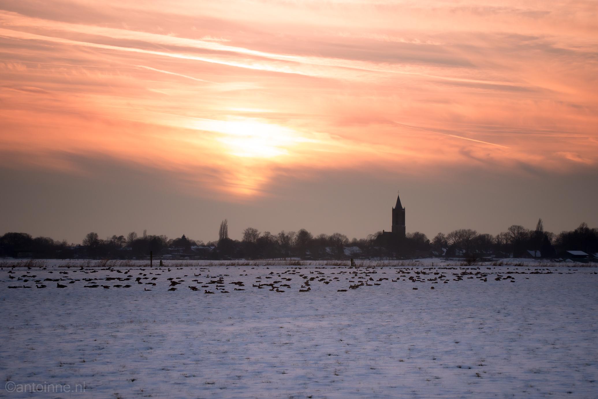Winter (2013)