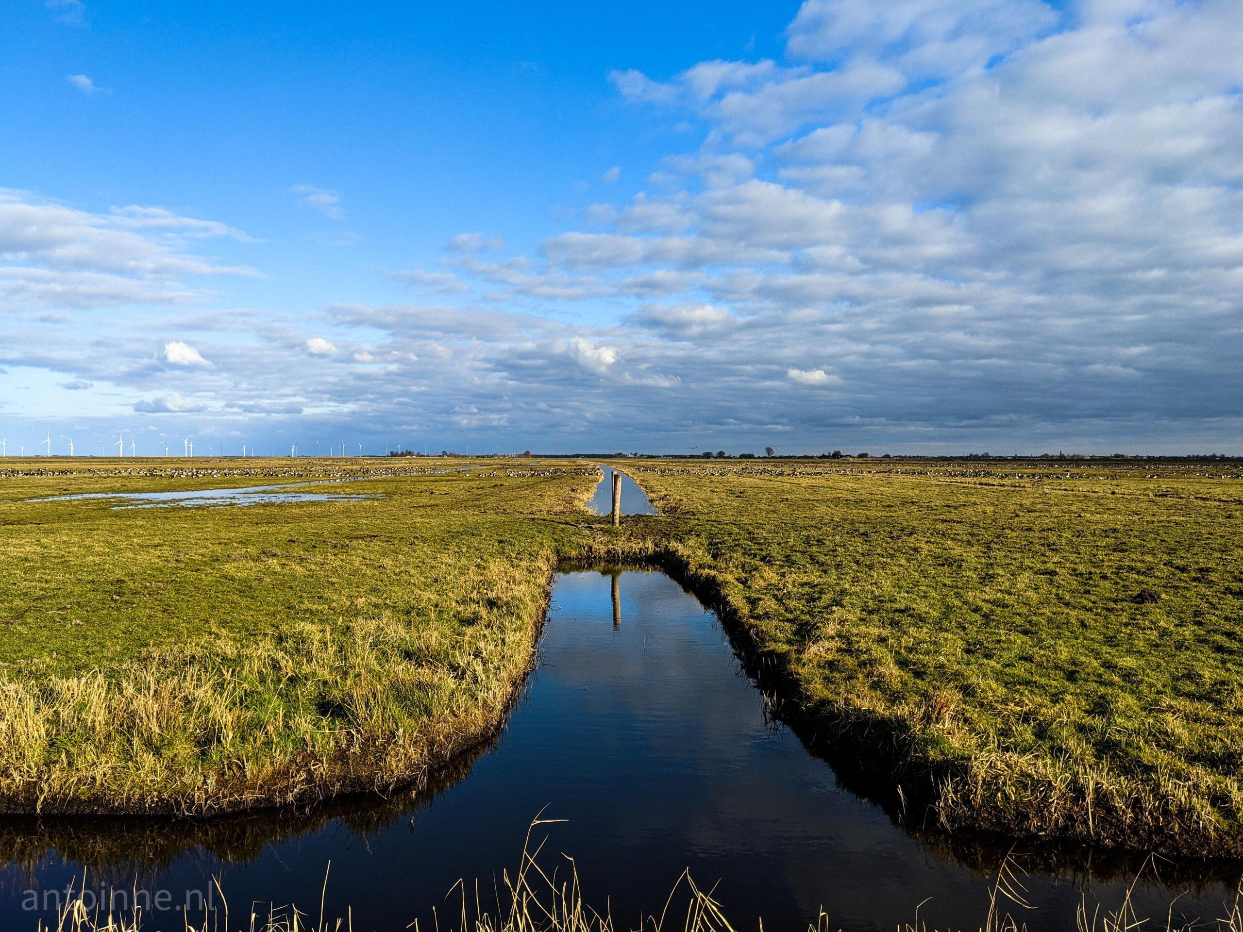 Noord Ervenweg (Eemnes)