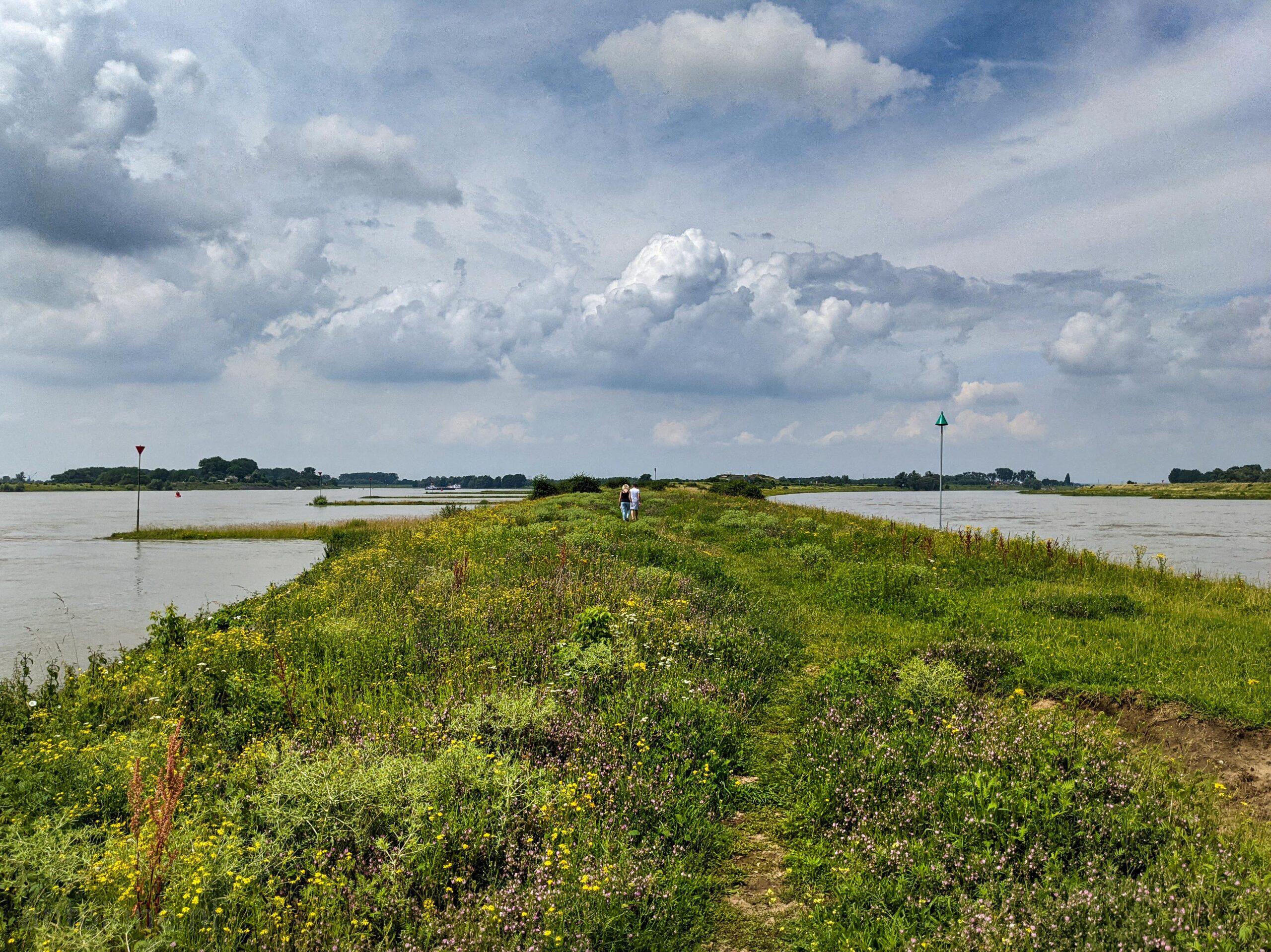 Zicht op Waal en Pannerdensch Kanaal